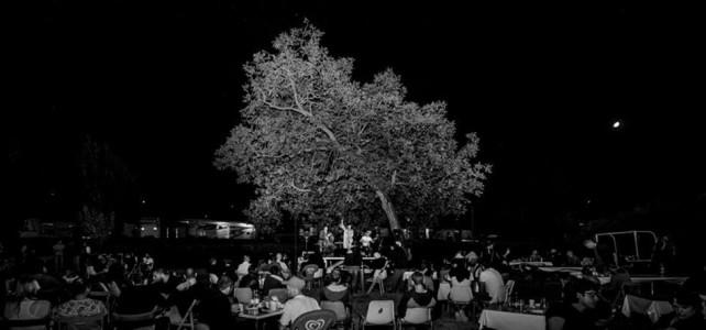 Green Space Music – La musica Brincamus alla Festa dell'Unità di Bologna